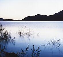 cool dusk by Steve Arkleton