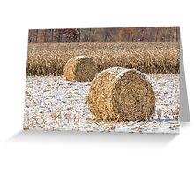 Snowy Cornstalk Bales Greeting Card