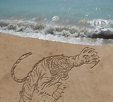 Drawing in sand by RoadRunner