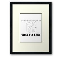 Never Throw This Formula In Anyone's Face That's A Salt Humor Poster Framed Print