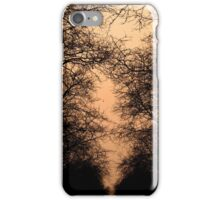 sunset and branches iPhone Case/Skin