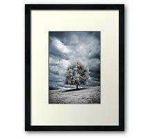 Glowing Tree Framed Print