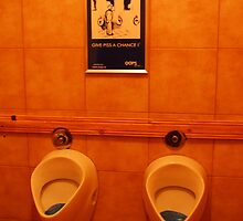 Romanian Urinal by Pat Herlihy