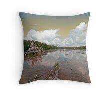 Low Tide At The Key Throw Pillow