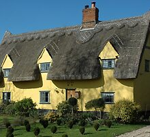 Thatched cottage by bishopsmead