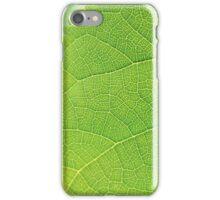 Backlit Leaf iPhone Case/Skin
