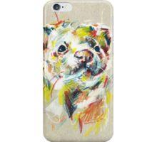Ferret I iPhone Case/Skin