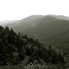 Smoky Mountains 2010 by Anthony Pierce
