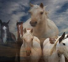Ghost riders in the sky!! by conilouz