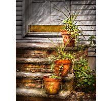 Three Pots  Photographic Print