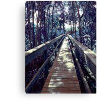 Blue Path Canvas Print
