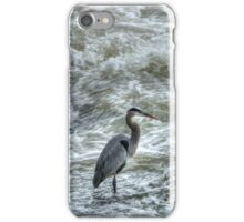 Fishing in the St James River iPhone Case/Skin