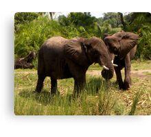Elephants on Parade Canvas Print
