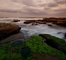 Bar Beach Rock Platform 8 by Mark Snelson