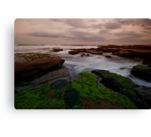 Bar Beach Rock Platform 8 Canvas Print