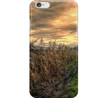 After The Harvest iPhone Case/Skin