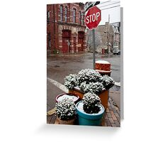 Stop n Snow Greeting Card
