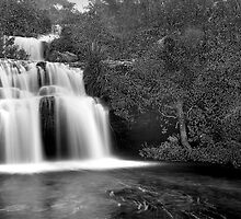 Frederica Falls by Andrew Bosman