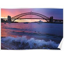 Morning Wake - Sydney Harbour, Sydney Australia Poster