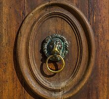Venice Doorhandle by eddytkirk