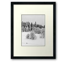 Walking through the snow Framed Print