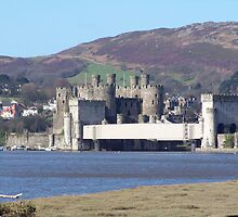 Conwy castle.  by ccrcats