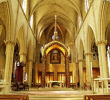 St Joseph Cathedral by alisacourtney