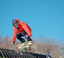 snowboarder 2 by Roslyn Lunetta