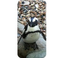 Hopping across the stones iPhone Case/Skin