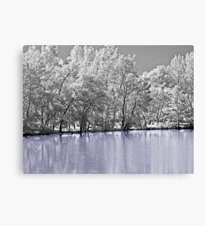 Dreaming Of Winter Canvas Print