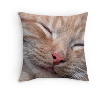 dreaming of mice Throw Pillow