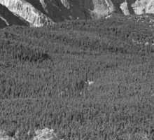Longs Peak 14259 Ft Black and White Poster Sticker