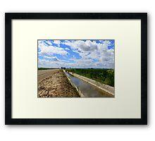 Irrigation Row Framed Print