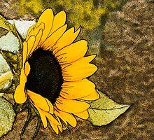 Sunflower Abstract by Sheryl Kasper