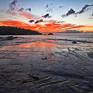 Tessellated Pavement by Peter Daalder