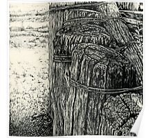Fence Posts Sketch Poster