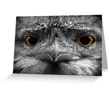 Eyes of a Hunter Greeting Card