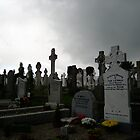 Irish Cemetary by Rhonda  Thomassen
