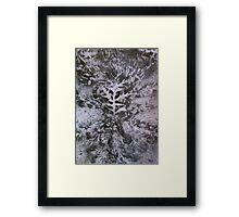 oak grey Framed Print