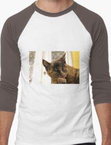 small cute cat Men's Baseball ¾ T-Shirt