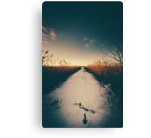 Why move Canvas Print