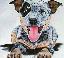 Heeler Pup by Penny Edwardes