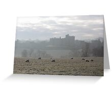 Early morning frost.......... Greeting Card