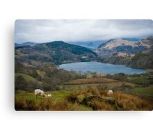 Welsh Countryside Canvas Print