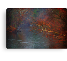Rainy Day on the James River Canvas Print