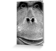 a model orang-utan Greeting Card