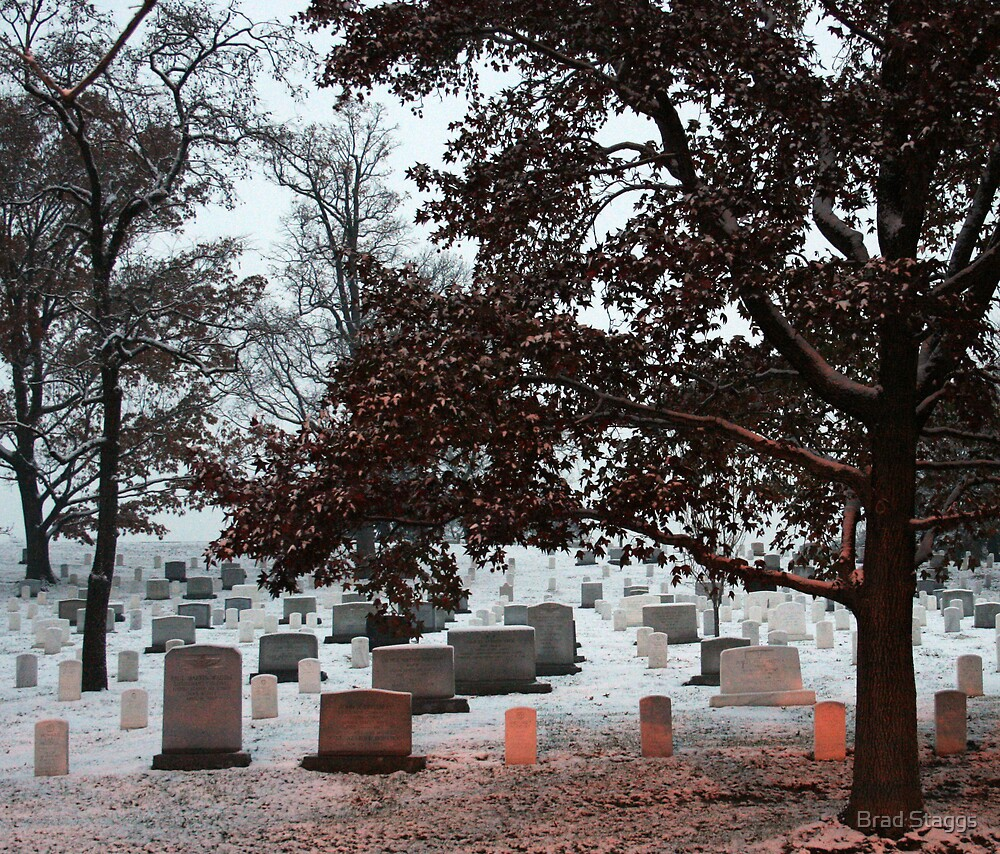 Arlington Cemetary in the Snow #3 by Brad Staggs