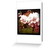 PINK BLOSSOM WITH ANT Greeting Card