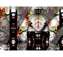 Non Denominational Prayer Rug Photographic Print