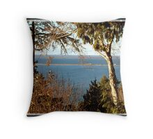 looking way down to the water Throw Pillow